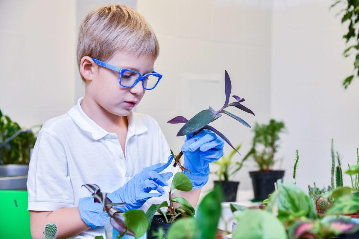 Сентябрьская профильная смена естественно-научного направления «Юные сити-фермеры»